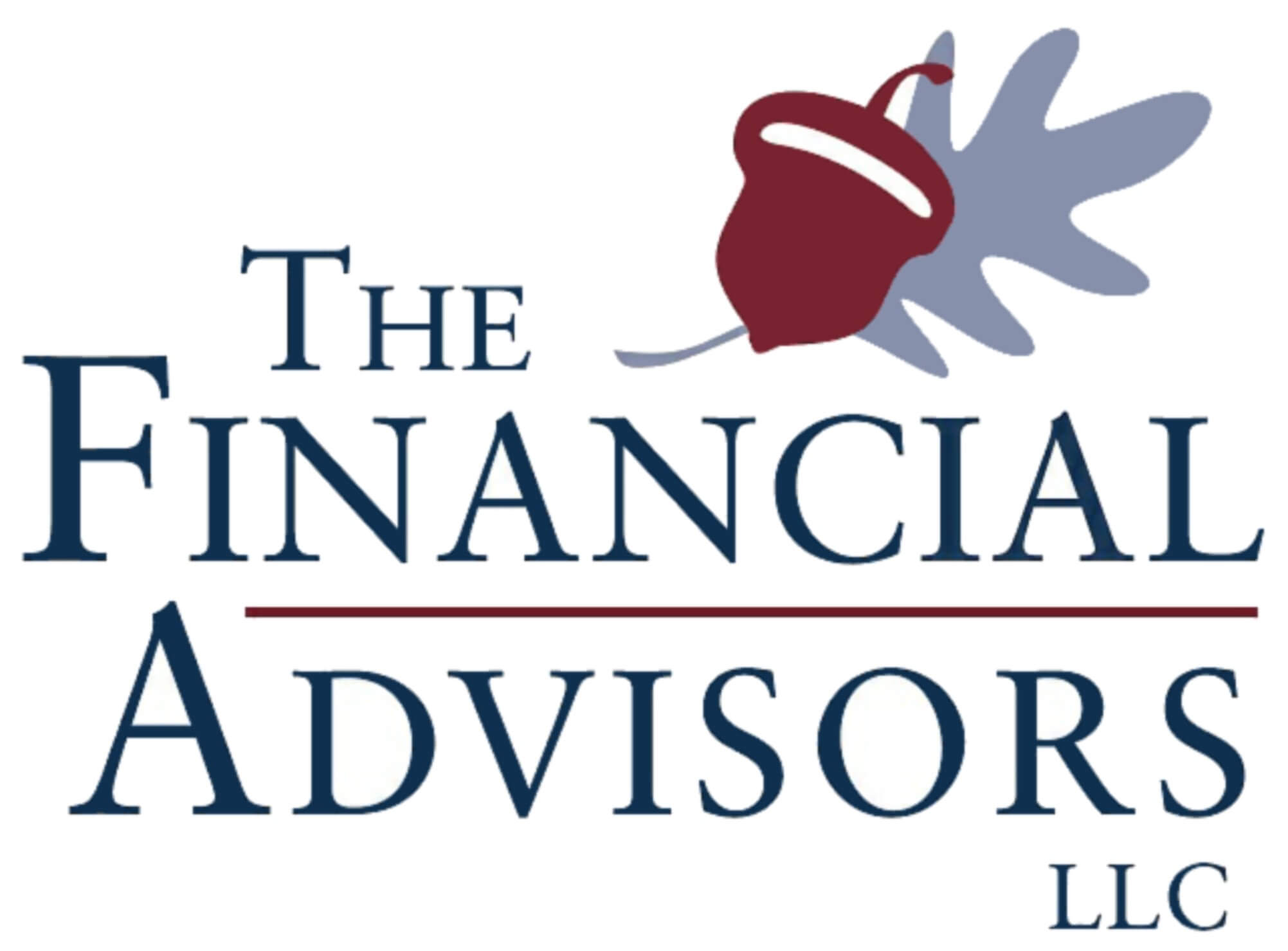The Financial Advisors